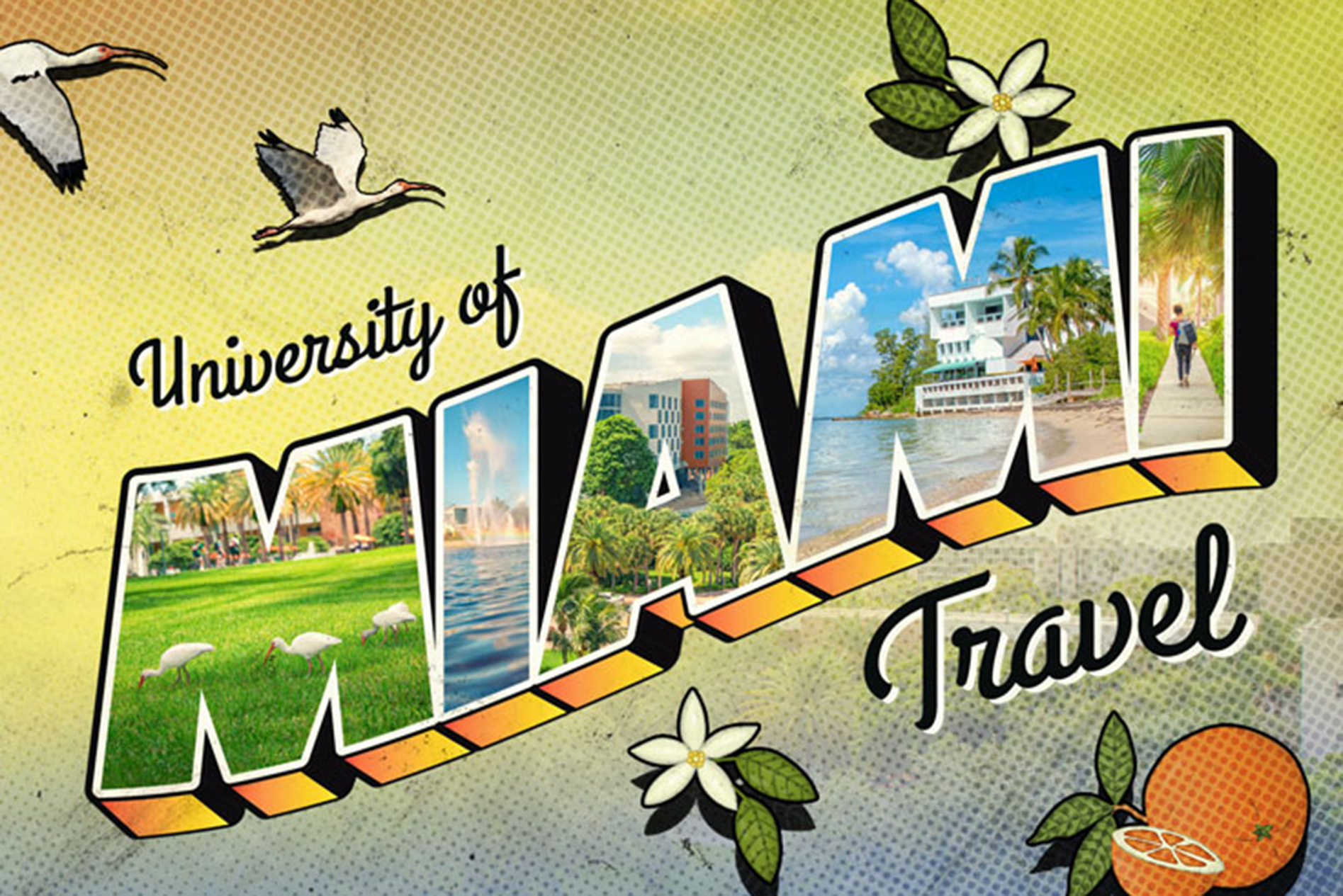 Logo of university of miami travel